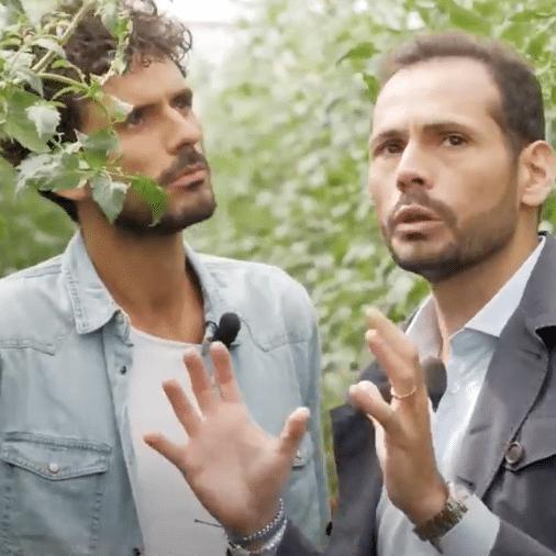 Così Com'è: come nasce un pomodoro – Parte 1 | Marco Bianchi